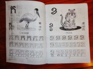 Andrea's practice book