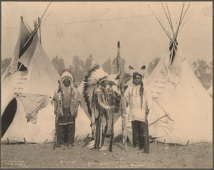 Black Foot, Standing Bear, Big Eagle, Sioux picture