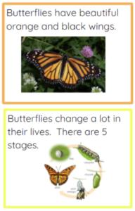 Figure 8. Example Manipulative Cards